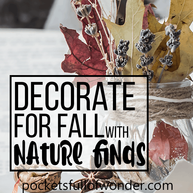 Decorate for Fall with Nature Finds - Twigs, Pine Cones, Acorns, Leaves