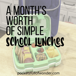 Simple School Lunch Ideas
