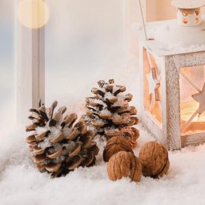 BUDGET-FRIENDLY Last Minute Christmas Decorating Ideas!