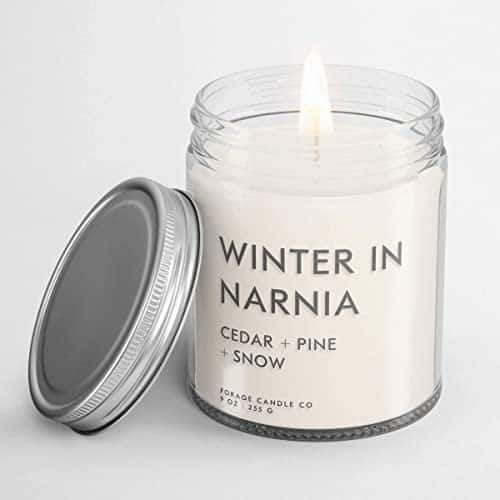 Winter in Narnia Candle - cedar, pine, and snow scents.